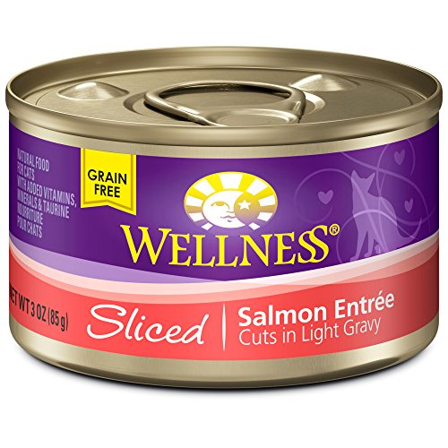 Wellness Natural Canned Grain Free Wet Cat Food, Sliced Salmon, 3-Ounce Can (Pack of 24)