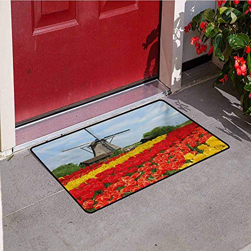 - Windmill Front Door mat Carpet Rows of Colorful Tulips in Northern Europe Rural Garden Bed Picturesque Summer Machine Washable Door mat W47.2 x L60 Inch Multicolor