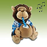 Musical''Pina Colada'' Monkey - A Cute & Decorative Gift for Anyone