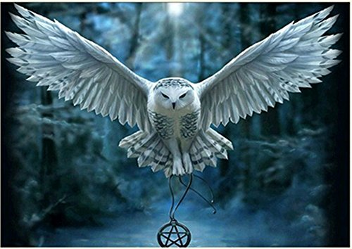 5D DIY Diamond Cross Stitch Kit Painting Full Square Rhinestone Embroidery for Wall Decoration (Owl)
