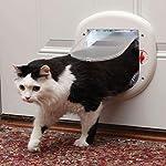 PetSafe Cat Door or Staywell Big Cat Large Cat Door for Interior Doors or Exterior Doors (Outer Size 11.4 in x 11.4 in…