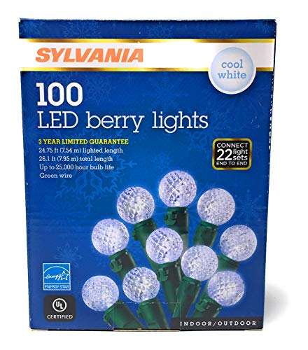 100 Led Berry Lights in US - 7