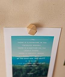 Box of 50 Pcs Geometric Wood Push Pins or Thumb Tacks Decorative Novelty Style,Push Pins for Map,Photos and Calendar