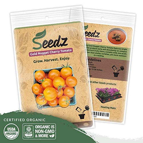 Organic Tomato Seeds (APPR. 75) Gold Nugget Cherry Tomato - Heirloom Vegetable Seeds - Certified Organic, Non-GMO, Non Hybrid - ()
