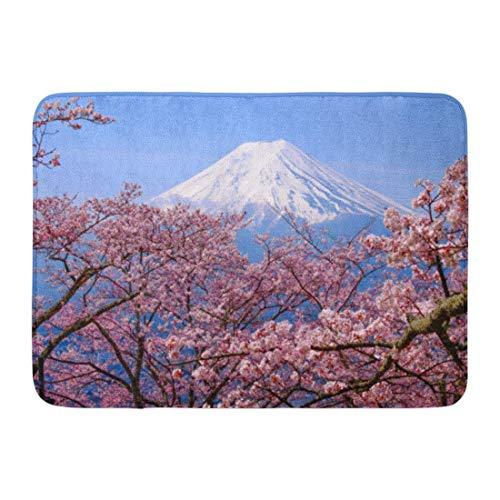 fashion-By Doormats Bath Rugs Outdoor/Indoor Door Mat Mt Fuji and Cherry Blossom in Japan Spring Season Japanese Call Sakura Selective Focus Bathroom Decor Rug 16