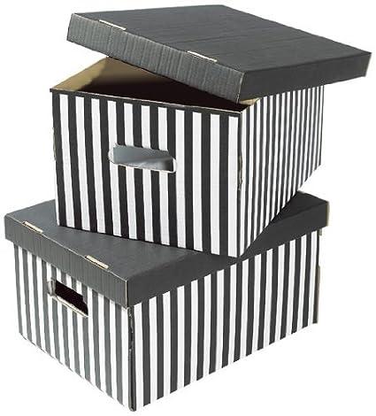 Compactor Set 2 Cajas DE Carton