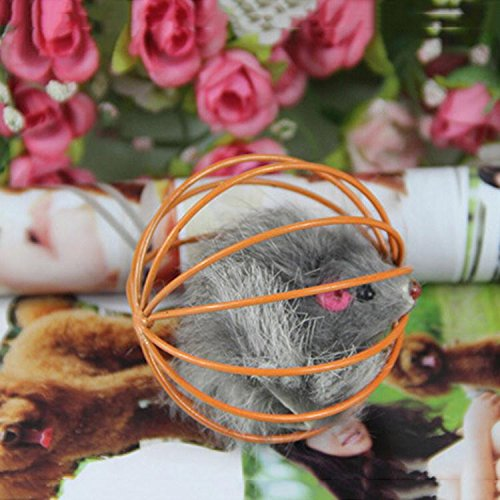 Amazon.com : Best Quality Home Gatos jouet Chat juguetes para Gatos katten speelgoed Funny pet Kitten cat Playing Mouse Rat mice Ball cage Toys Randomly ...