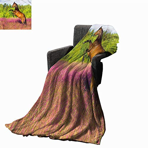 Anzhutwelve Soft Blankets Horse,Strong Bay Horse Rearing Up Plush Microfiber Blanket W90 x L70 inch