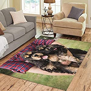 Semtomn Area Rug 2' X 3' Brown American Cocker Spaniel Dog are Being Walked Home Decor Collection Floor Rugs Carpet for Living Room Bedroom Dining Room 8