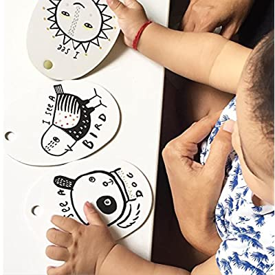 Wee Gallery, Stroller Cards, Flash Card Clips for Baby - I See on a Walk: Toys & Games