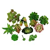 Greatflower 12 Different Kinds of Artificial Succulents for Plants Wall DIY Materials