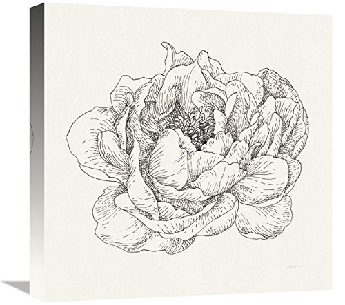 Global Gallery Danhui Nai, Pen and Ink Florals V' Giclee Stretched Canvas Artwork, 18 x (Bentley Pen)
