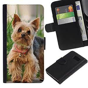 All Phone Most Case / Oferta Especial Cáscara Funda de cuero Monedero Cubierta de proteccion Caso / Wallet Case for Sony Xperia Z3 Compact // Cute Happy Yorkie Terrier