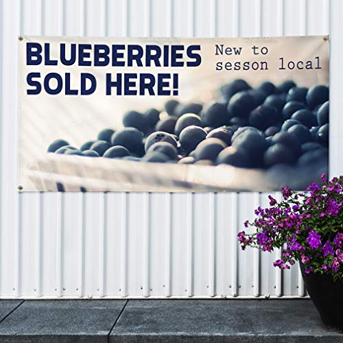 Amazon com : Brand New Vinyl Banner Sign Blueberries Sold