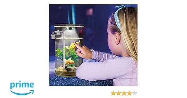 Wonder Fish Pecera Acuario autolimpiable: Amazon.es: Productos para mascotas