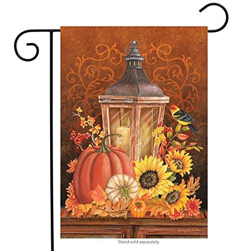 Briarwood Lane Fall Lantern Primitive Garden Flag Pumpkins Sunflower 12.5