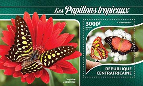 Central Africa - 2015 Tropical Butterflies - Souvenir Sheet - (Butterflies Souvenir Sheet)