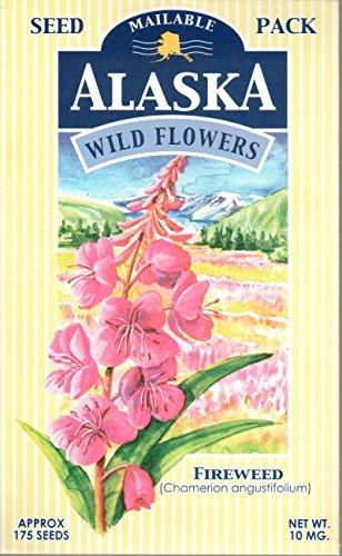 "Wildflowers of Alaska ""Fireweed"" Seed Postcard (175 Seeds)"