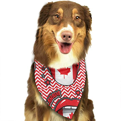 FRTSFLEE Dog Bandana Happy Birthday Canada Pop Art Scarves Accessories Decoration for Pet Cats and Puppies]()