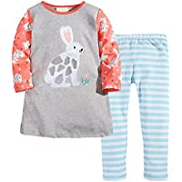 Fiream Longsleeve Casual Clothing Sets Cotton Dress Sets 2 Piece for Girls