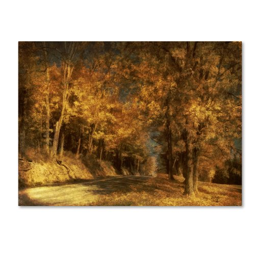picture of Trademark Fine Art Back Roads Canvas Wall Art by Lois Bryan, 14 by 19-Inch