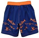 iXtreme Little Boys Shark Short Sleeve Rashguard