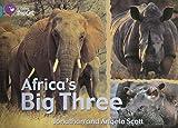 Africa's Big Three