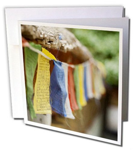 As10 Aas0022 Pack of 6 Buddhist Prayer Flags 3dRose gc/_132512/_1 6 x 6-InchLadakh Alchi Anthony Asael Greeting Card