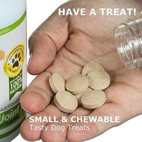 Amazing Probiotics for Dogs Eliminates Milk Replacers