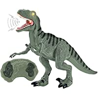 Liberty Imports Dino Planet Remote Control R/C Walking Dinosaur Toy with Shaking Head, Light Up Eyes and Sounds (Velociraptor)