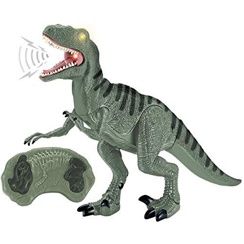 Liberty Imports Dino Planet Remote Control R/C Walking Dinosaur Toy with Shaking Head, Light Up Eyes and Sounds (Velociraptor) -