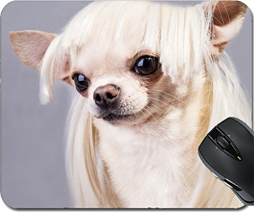 MSD Mousepad Mouse Pads/Mat design 24455131 beautiful dog close up portrait