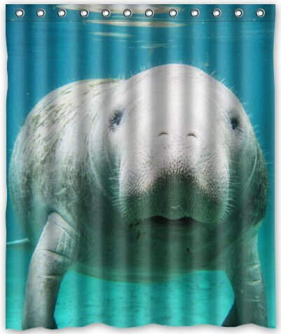 Cool Design Manatee Shower Curtain 60quotw X 72quoth