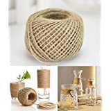 100 Meter / 300 Feet Natural Jute Twine 3Ply Arts Crafts Garden Jute Rope 2mm Thick Heavy Duty Packing String For Gifts DIY Decoration Card Gardening (1 PCS) (Jute Twine. A)