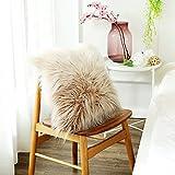 Decorative Pillow Cover - OJIA Deluxe Home Decorative Super Soft Plush Mongolian Faux Fur Throw Pillow Cover Cushion Case (18 x 18 Inch, Mocha Color)