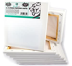 Daveliou Stretched Canvas 8x10 - Canvas Art 10-Piece Pack - Triple Primed Art Canvas …