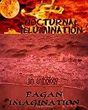Nocturnal Illumination, Kerry A. Morgan, 1449919391