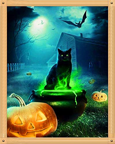 DIY 5D Diamond Painting, Halloween Full Drill Embroidery Paint with Diamonds Wall Sticker for Home Wall Decor - Black Cat and Pumpkin 12x16inch