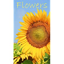 Photo book of Varity Flowers: Photo book for flower lovers, garden enthusiasts, photography buffs, and collectors  (Beautiful Flowers 2)