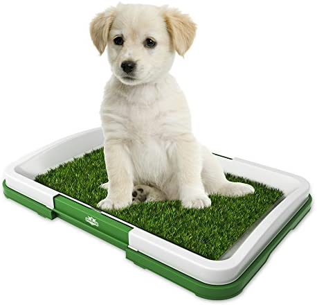 Best Indoor Dog Potty Reviews – (2018\'s Top 5 Picks) - Ultimate Home ...
