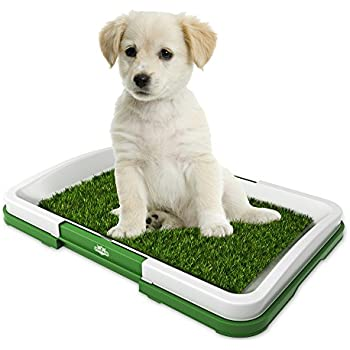Amazon Com Artificial Grass Bathroom Mat For Puppies And