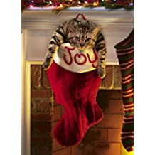 Avanti Christmas Cards, Overstuffed Stocking, 10-Count