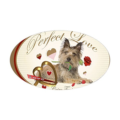 CafePress Cairn Terrier Perfect Love Poster Sticker (Oval) Oval Bumper Sticker, Euro Oval Car Decal