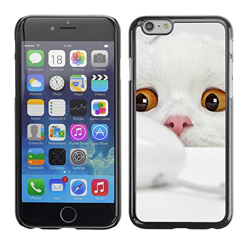 Premio Sottile Slim Cassa Custodia Case Cover Shell // V00003192 cute cat 3 // Apple iPhone 6 6S 6G PLUS 5.5""
