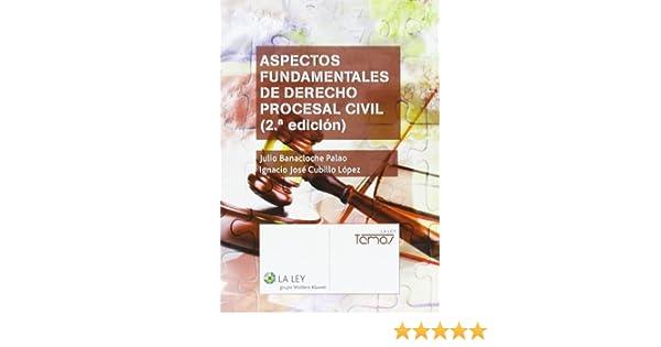 Aspectos fundamentales de Derecho procesal civil 2.ª edición Temas La Ley: Amazon.es: Julio Banacloche Palao: Libros
