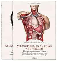 Bourgery. Atlas of Human Anatomy and Surgery (Jumbo