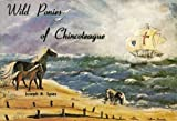 The Wild Ponies of Chincoteague, Joseph R. Spies, 0870332376