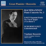 Great Pianists (Horowitz)