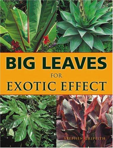 Leaf Effect - Big Leaves for Exotic Effect