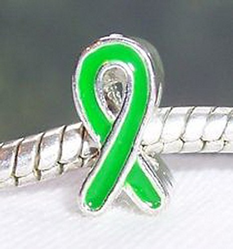 Craft Spot Global Solid Green Awareness Ribbon Silver Plated Bead fits European Charm Bracelets CSG # 104308